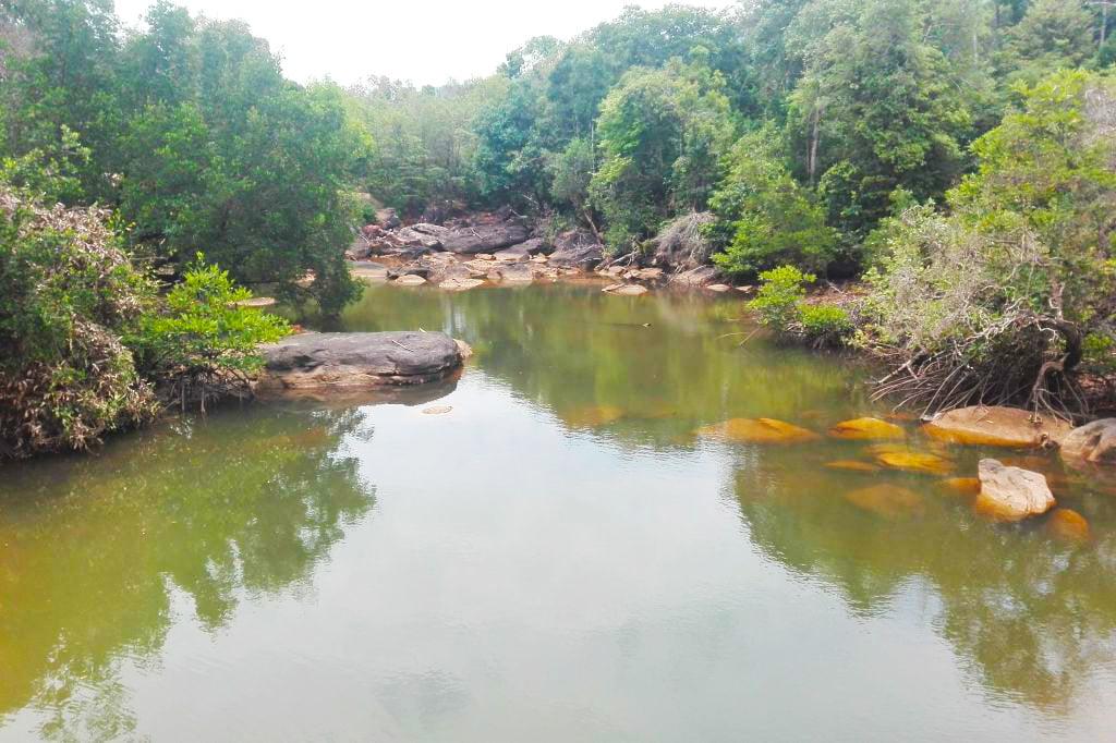 Vườn quốc gia Phú Quốc City